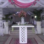 entrada festejos boda